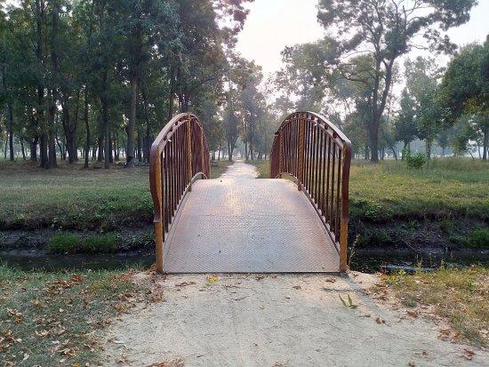 Северный парк
