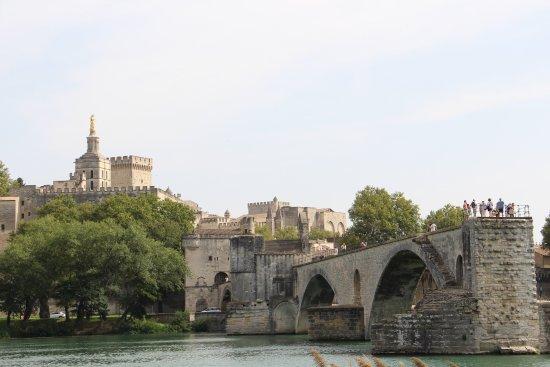 Ile de la Barthelasse : Vue sur Avignon et son pont