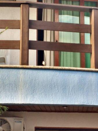 Sued's Plaza Hotel照片