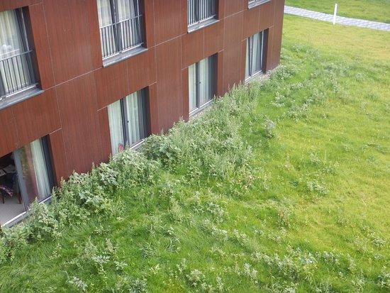 Bad Langensalza, Germany: Rückseite Hotel