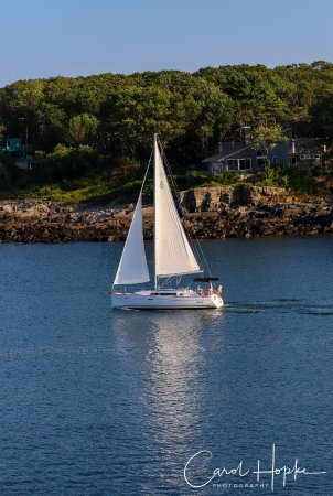 York Harbor, ME: Sailboat heading out for a sunset cruise - view from ocean view king room