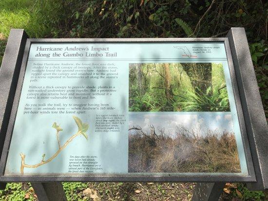 Gumbo Limbo Trail: photo0.jpg