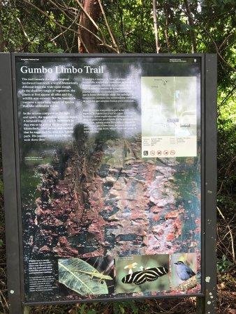 Gumbo Limbo Trail: photo1.jpg