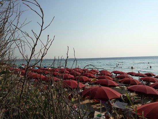 Padula Bianca, Itália: Iride Beach