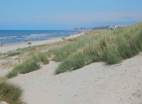 Bray-Dunes- Dune du Perroquet et immeubles belges de La Panne