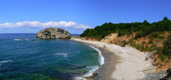 Kandira, ตุรกี: Sardala Koyu