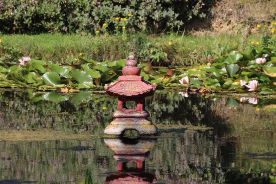 Bennetts Water Gardens: Mini pagoda in one of the lakes