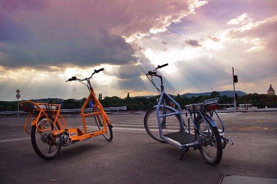Lopifit - Electric Walking Bike