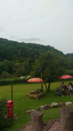 Biblins Tea Garden