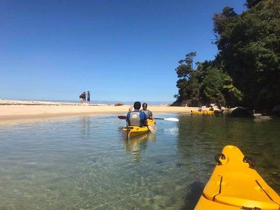 Marahau, New Zealand: Kayaking in Abel Tasman National Park