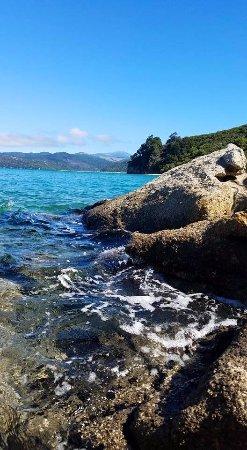 Marahau, New Zealand: Abel Tasman National Park