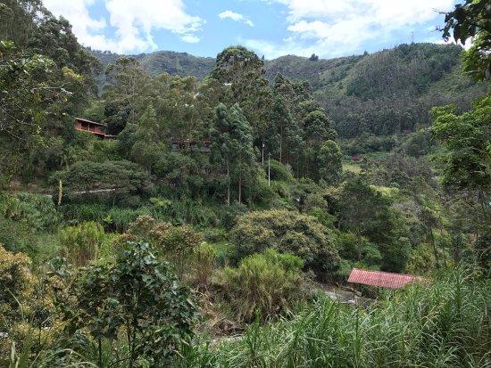 Hosteria Finca Chamanapamba: photo2.jpg