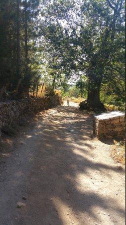Evisa, France: 20170821_162327_large.jpg