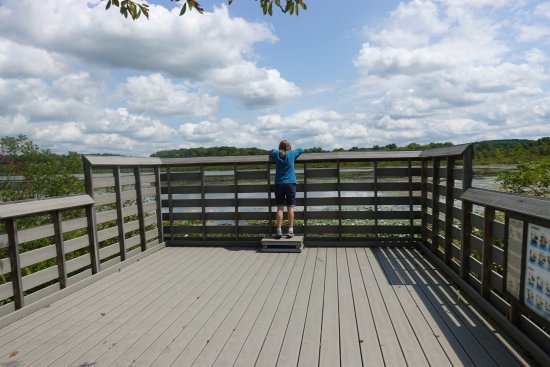 Burton, OH: Deck/platform for birdwatching over Lake Kelso