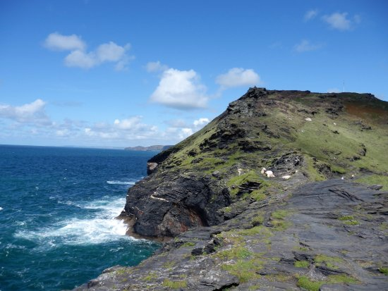 Boscastle, UK: Care needs to exercised when walking along any of the coastal paths.