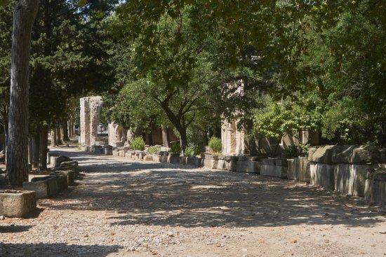 Les Alyscamps : La voie romaine avec ses tombes et mausolées
