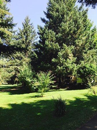 Roseburg, OR: Beautiful grounds