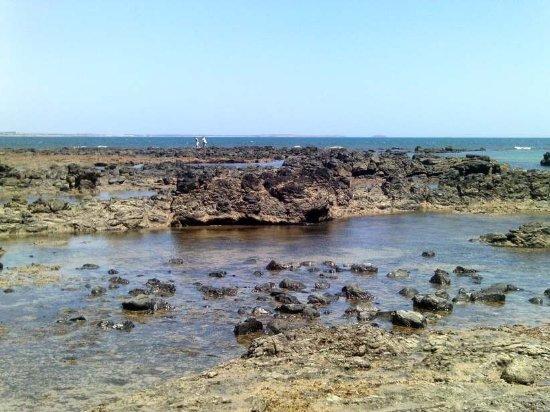Balnarring, Australia: great for rock pooling