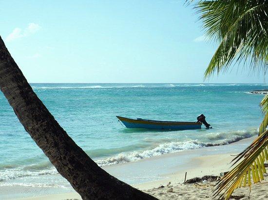 Bayahibe, République dominicaine : Barque de pêcheur. Isla Saona.