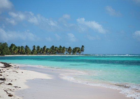 Bayahibe, République dominicaine : Isla Saona. Vu de la plage.