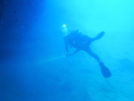 Tremiti Diving Center: photo1.jpg