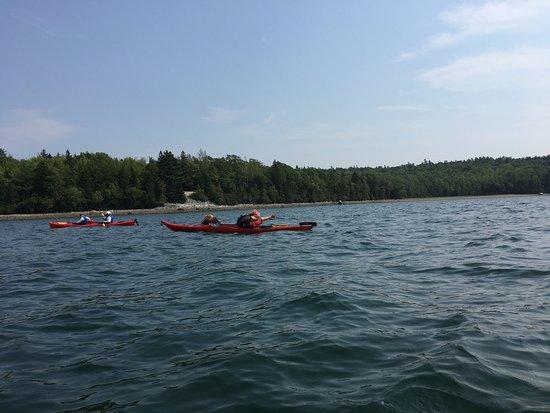 National Park Sea Kayak Tours Bar Harbor Me Updated
