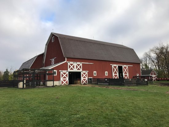 Northville, MI: Maybury Farm
