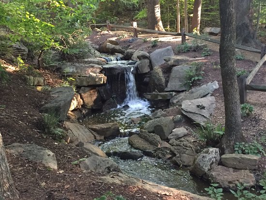Greensboro, Carolina del Norte: Bog Garden Waterfall