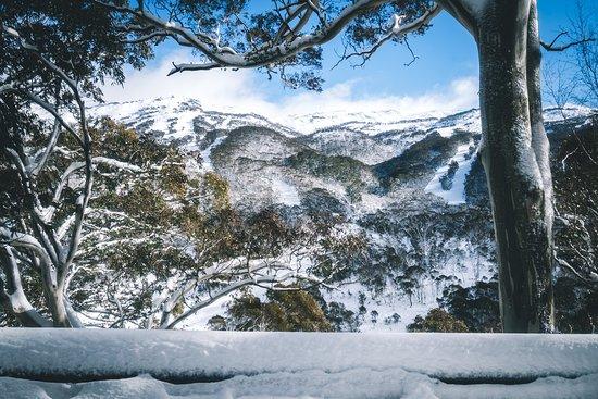 Landscape - Picture of Pure Chalet, Thredbo Village - Tripadvisor