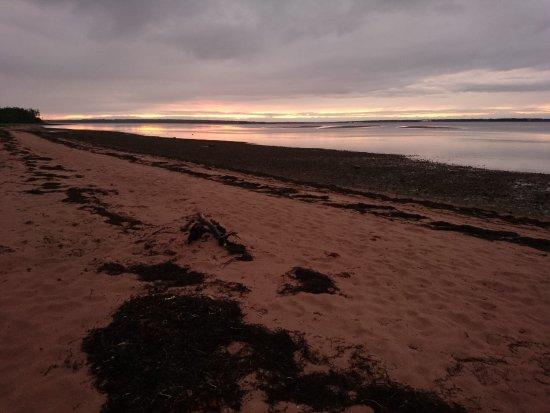 Montague, Canada: sunset - need bug spray