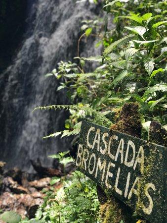 Paraiso Quetzal Lodge: photo1.jpg