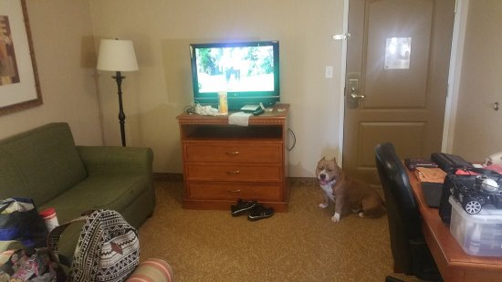 Country Inn & Suites by Radisson, Toledo, OH: photo0.jpg