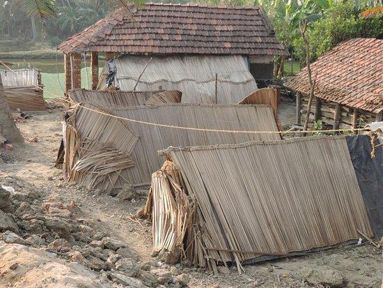 Village - Picture of Chandpur Beach, Digha - TripAdvisor