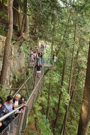 North Vancouver, Kanada: Capilano Cliff Walk