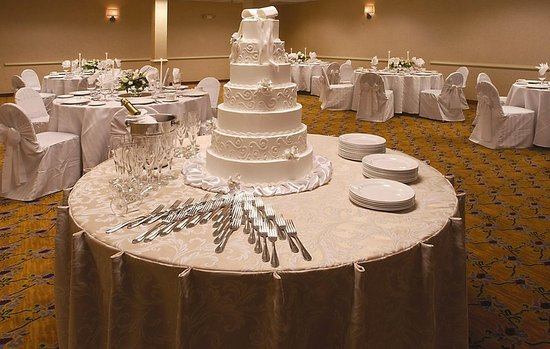 Atrium Hotel & Suites, DFW Airport South: Ballroom
