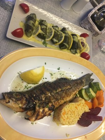 Remvi Restaurant : Dolmades and baked fish
