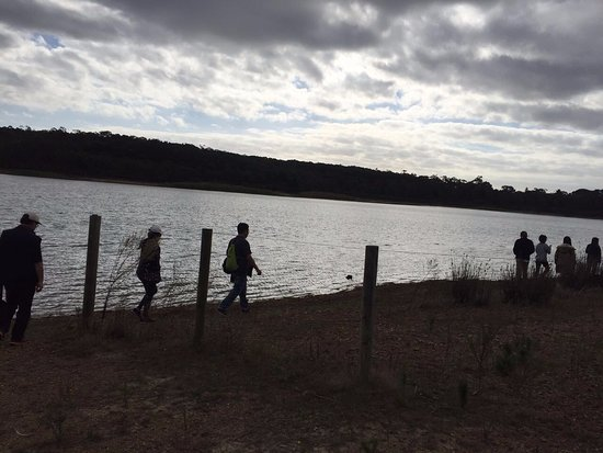Moorooduc, Australia: Walking along the lake in group