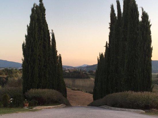 Relais Villa Grazianella - Fattoria del Cerro: photo4.jpg
