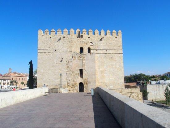 Foto de Torre de la Calahorra