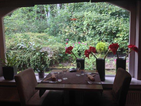 Lichtaart, België: Uitzicht op de tuin