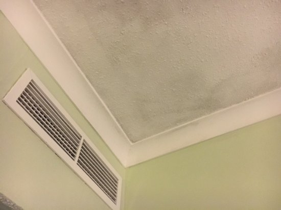Stained ceiling  / walls