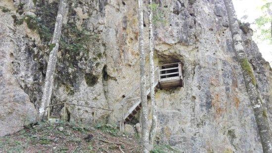Malborghetto-Valbruna, Italy: IMG_20170825_113943_large.jpg