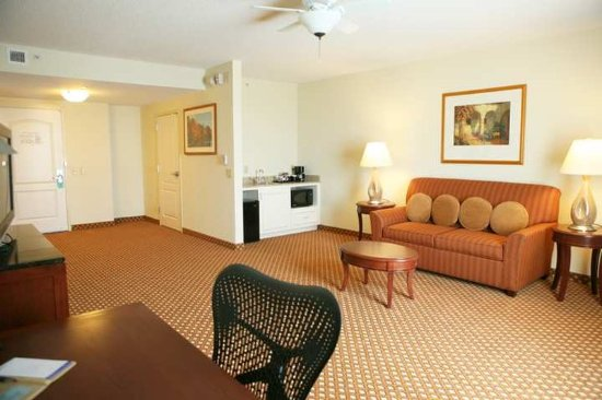 Hilton Garden Inn Harrisburg East: Suite