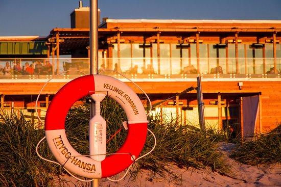 Skåne, Suède : Przy plaży w okolicy mariny Skanör-Falsterbo, fot. Elwira Sabatowska