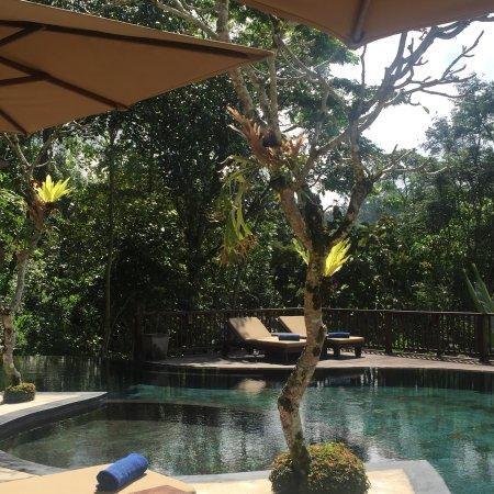 Nandini Bali Jungle Resort & Spa: photo5.jpg