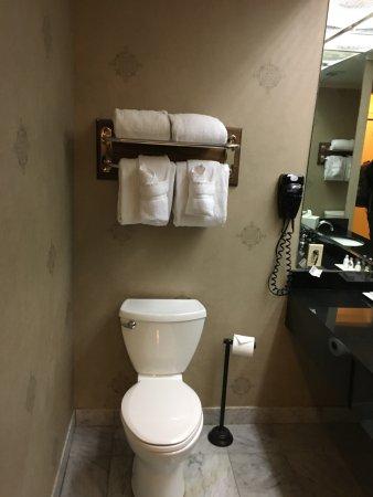 The Pelham: nice size bathroom , shower is pretty bg too