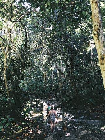 Adventures in Paradise Fiji: photo5.jpg