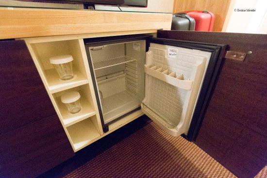 โซเอสต์ดุนเอน, เนเธอร์แลนด์: Refrigerador