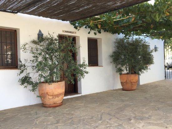 Casa Rural El Olivar: photo2.jpg