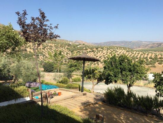 Casa Rural El Olivar: photo3.jpg